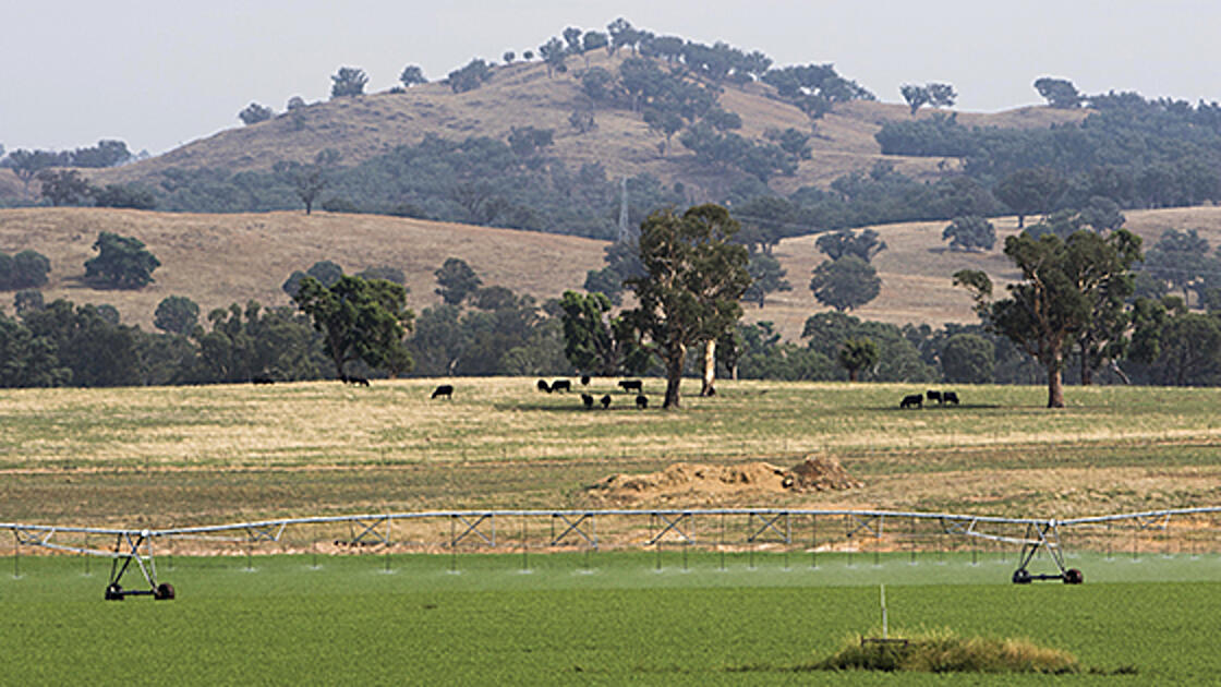 Groundwater licence holders' input needed