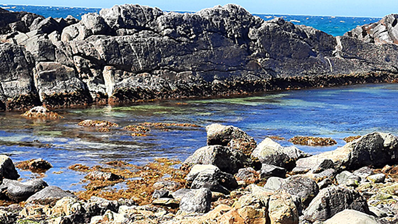 Coastal image of a rock pool.