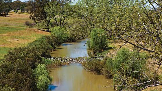 Warialda creek Warialda 22023228-56